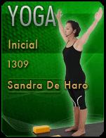 Cartela sandra-yoga-inicial-d05