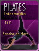 Cartela 141120-sandra-pilates2-d08
